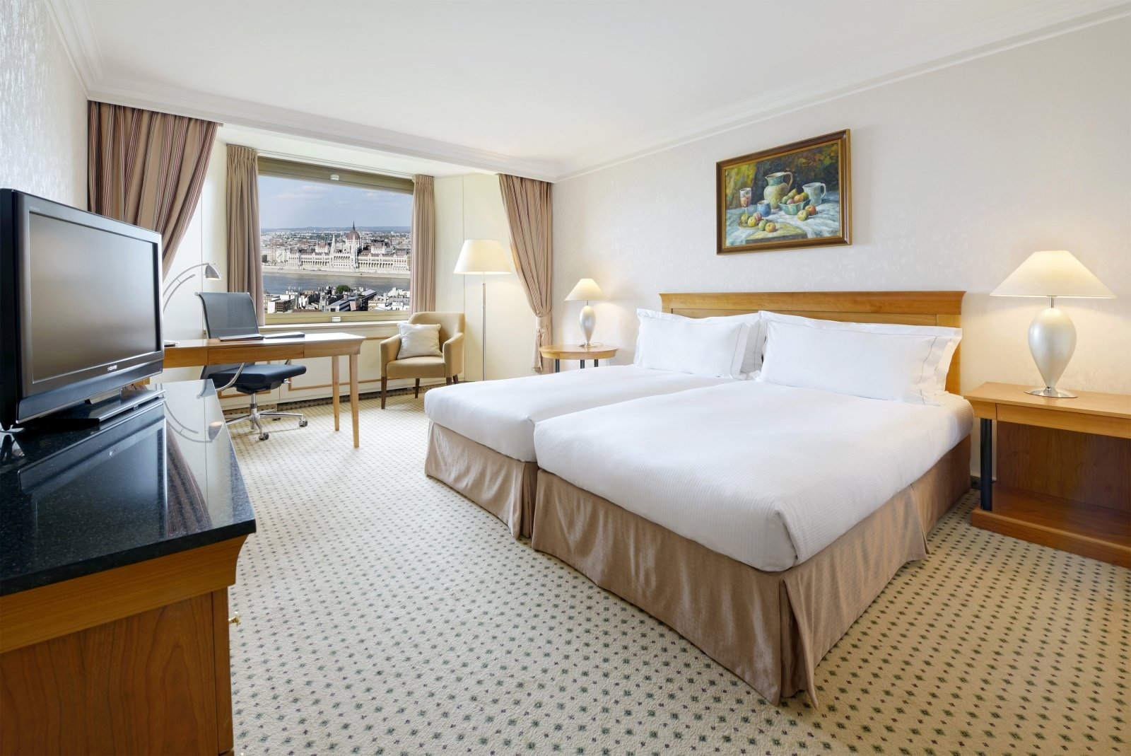 Twin Danube view room