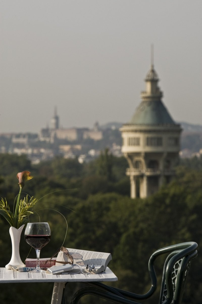 View+from+the+hotel - Danubius+Grand+Hotel+Margitsziget - hotel Budapest