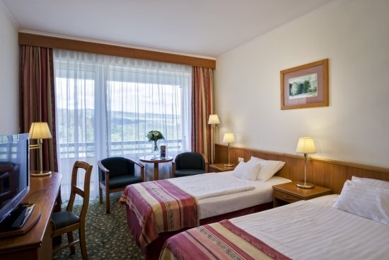 Twin+Room - Danubius+Health+Spa+Resort+Sovata - hotel Sovata