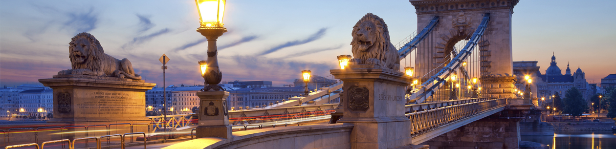 Budapest Winter Invitation - Winter
