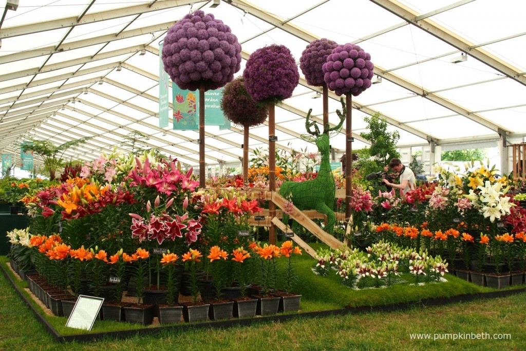 Hampton Palace Flower show