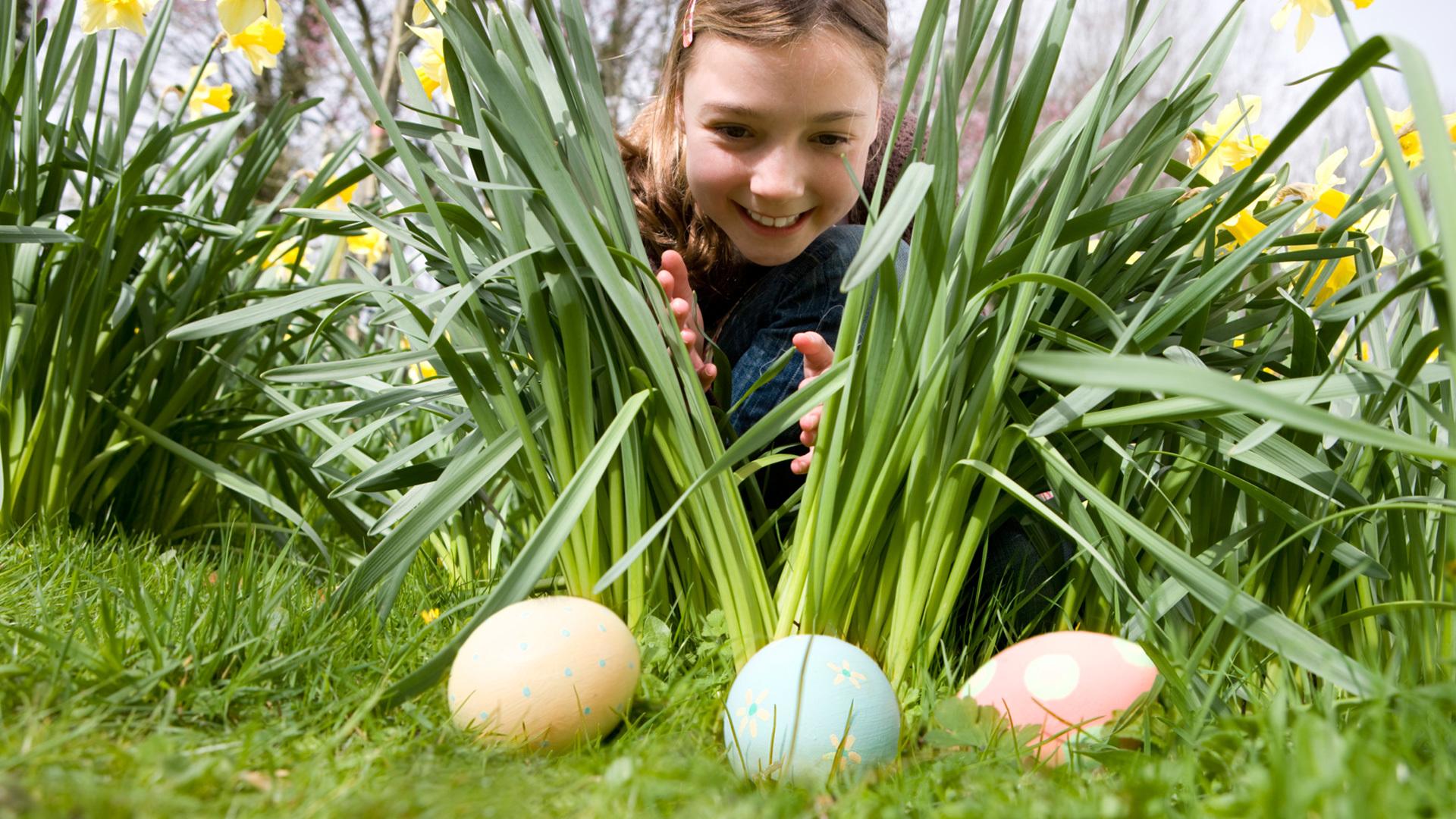 tojáskereső kislány