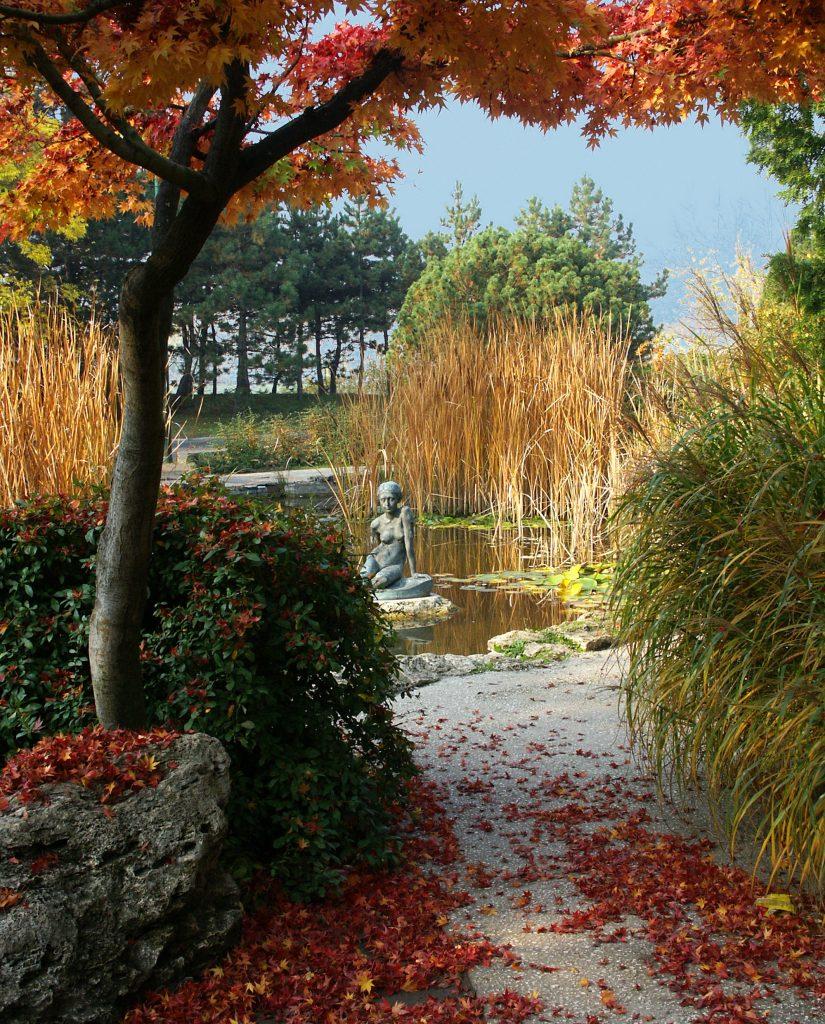 Az őszi Margitsziget