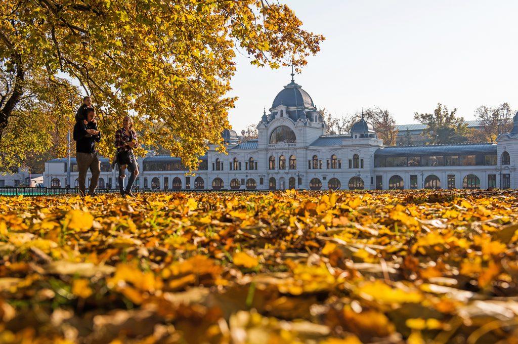 Őszi hangulat Budapesten